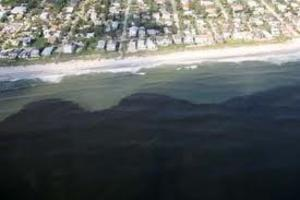 is red tide caused by humans